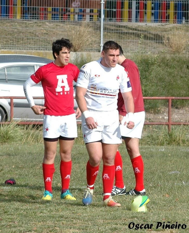 rugby arquitectura 2019