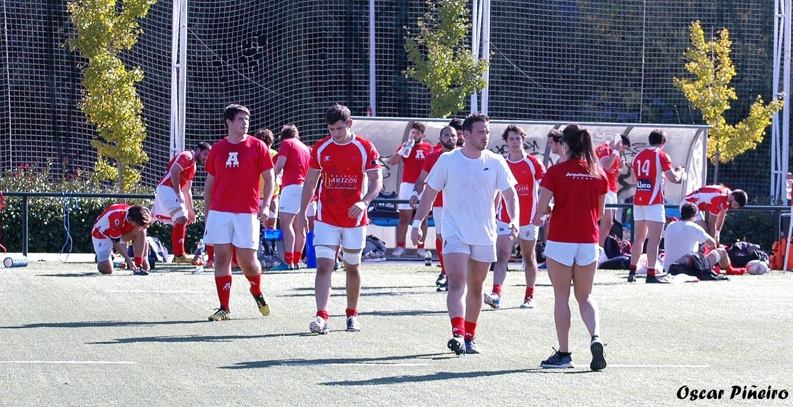 arquitectura rugby liceo