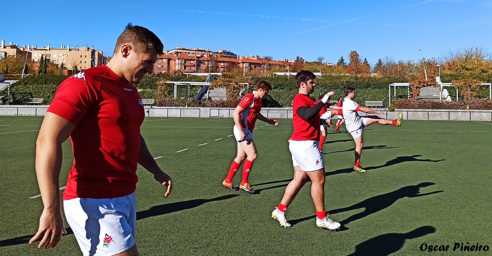 arquitectura rugby marbella